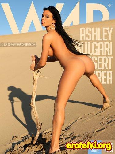 """Ashley Bulgari """"Desert Area"""""""