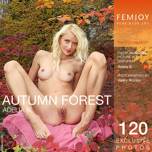 "Adelia B ""Autumn Forest"""