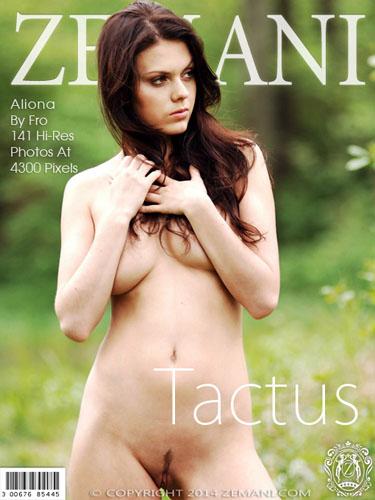 """Aliona """"Tactus"""""""