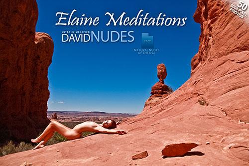 "1430599707_all-ero-2126 Elaine ""Meditations"""