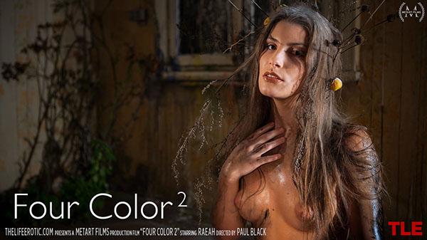 """Raeah """"Four Color 2"""""""