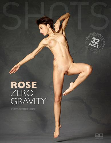 """Rose """"Zero Gravity"""""""