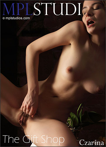 "1459106896_all-ero-1795 Czarina ""The Gift Shop"" by Alexander Fedorov"