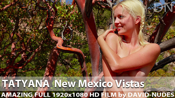 "Tatyana ""New Mexico Vistas"""