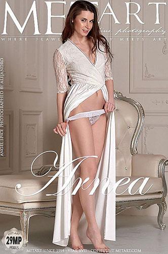 "Angel Spice ""Arnea"""