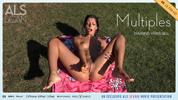 "Vivien Bell ""Multiples"""
