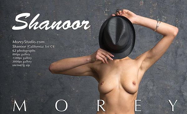 Shanoor Photo Set C6