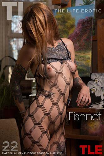 """Marcella Lippy """"Fishnet"""""""