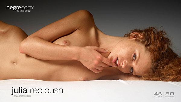 "Julia ""Red Bush"""