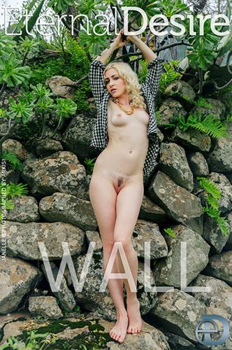 """Janelle B """"Wall"""""""