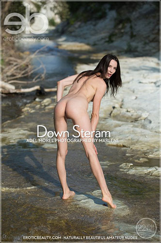 "Adel Morel ""Down Stream"""
