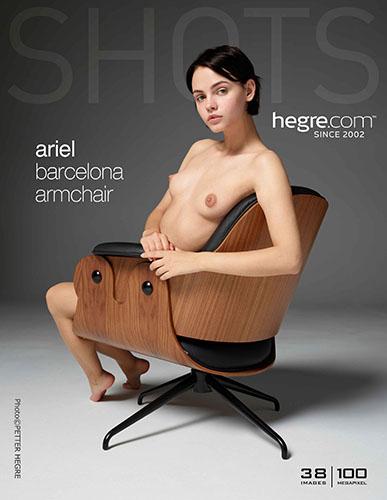 "Ariel ""Barcelona Armchair"""