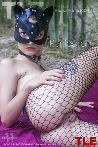 """Jacinta B """"Purrfection"""""""