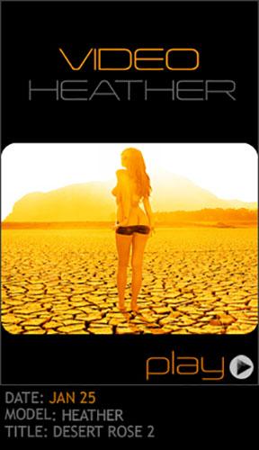 "Heather ""Desert Rose 2"""