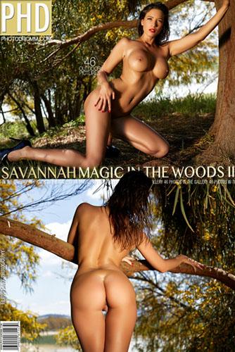 "Savannah ""Magic in the Woods 2"""