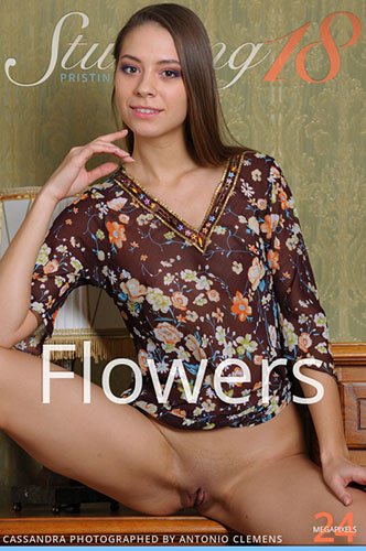 """Cassandra """"Flowers"""""""