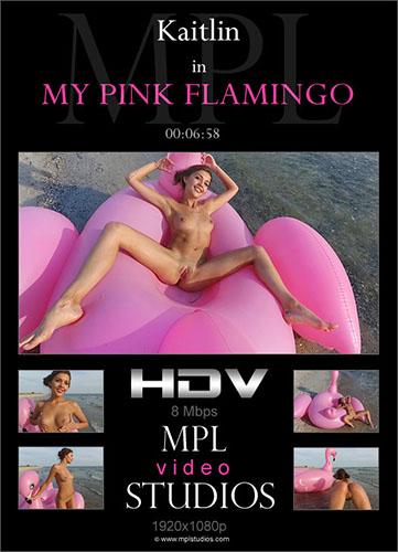 "Kaitlin ""My Pink Flamingo"""