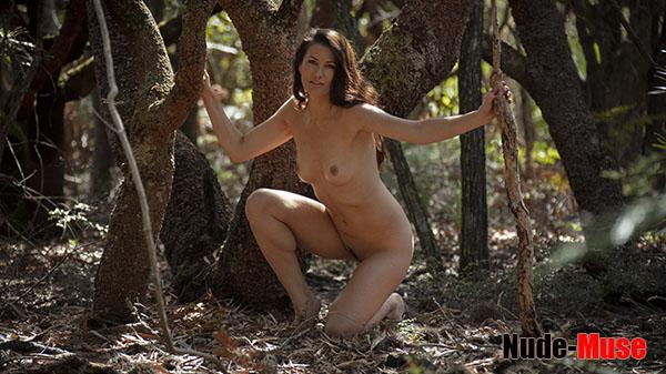 "Kathleen ""Beach Forest"""