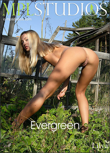 "Lilya ""Evergreen"""