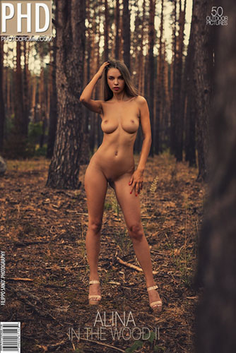 "Alina ""In The Wood 2"""