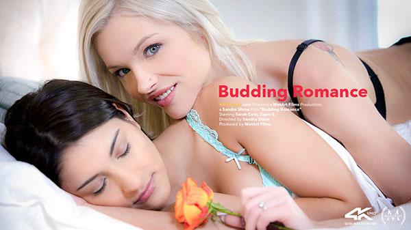 "Sarah Cute & Zazie S ""Budding Romance"""