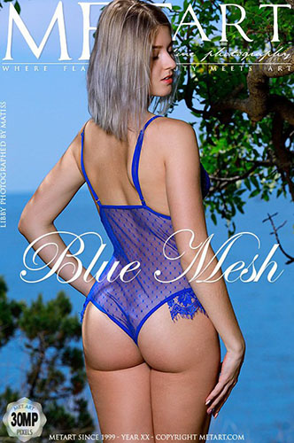 "Libby ""Blue Mesh"""