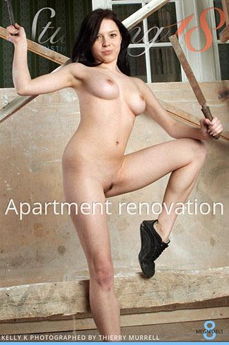 "Kelly K ""Apartment Renovation"""