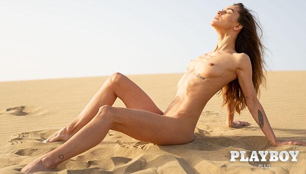 """Rose Whitney """"Desert Charm"""""""