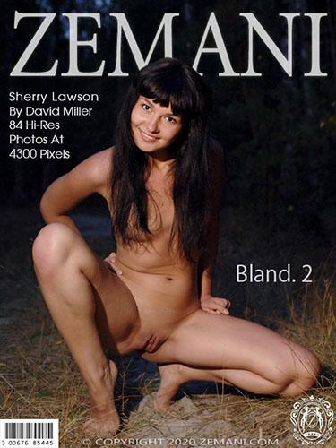 """Sherry Lawson """"Bland. 2"""""""