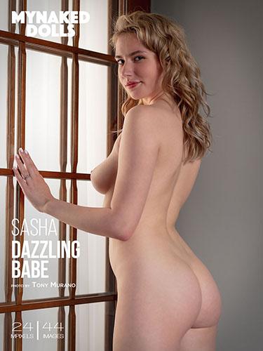 "Sasha ""Dazzling Babe"""