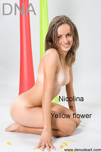 "Nicolina ""Yellow Flower"""