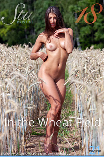 """Valya """"In the Wheat Field"""""""