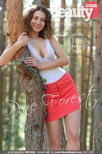 "Ari ""Pine Forest"""