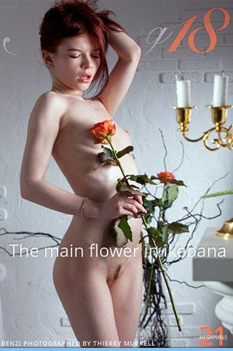 """Renzi """"The Main Flower in Ikebana"""""""