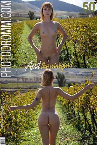 "April ""The WineYard"""