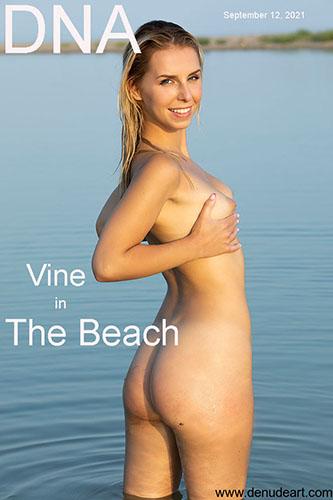 """Vine """"The Beach"""""""