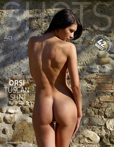 """Orsi """"Tuscan Sun"""""""